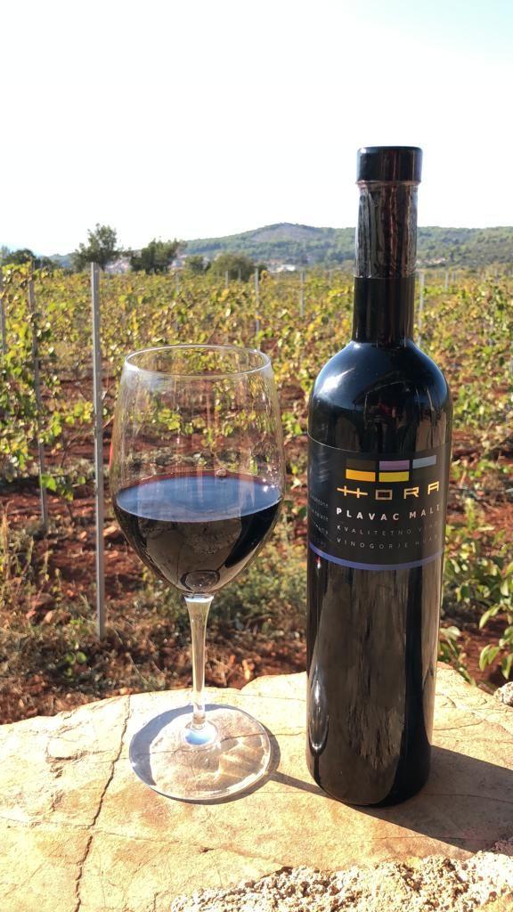croatia-wines-3