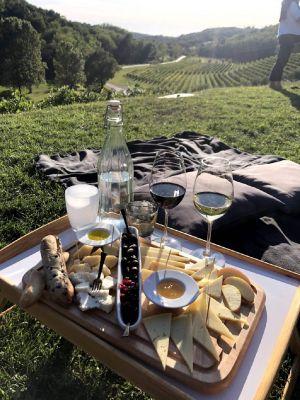 croatia-wines-2