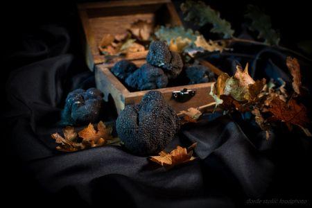truffles-in-istria